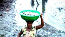 A woman carrying bowl full fish Photo