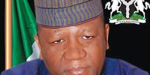 The Gains of Democracy in Gusau Local Government Council