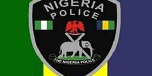 Nigeria's Changing Police